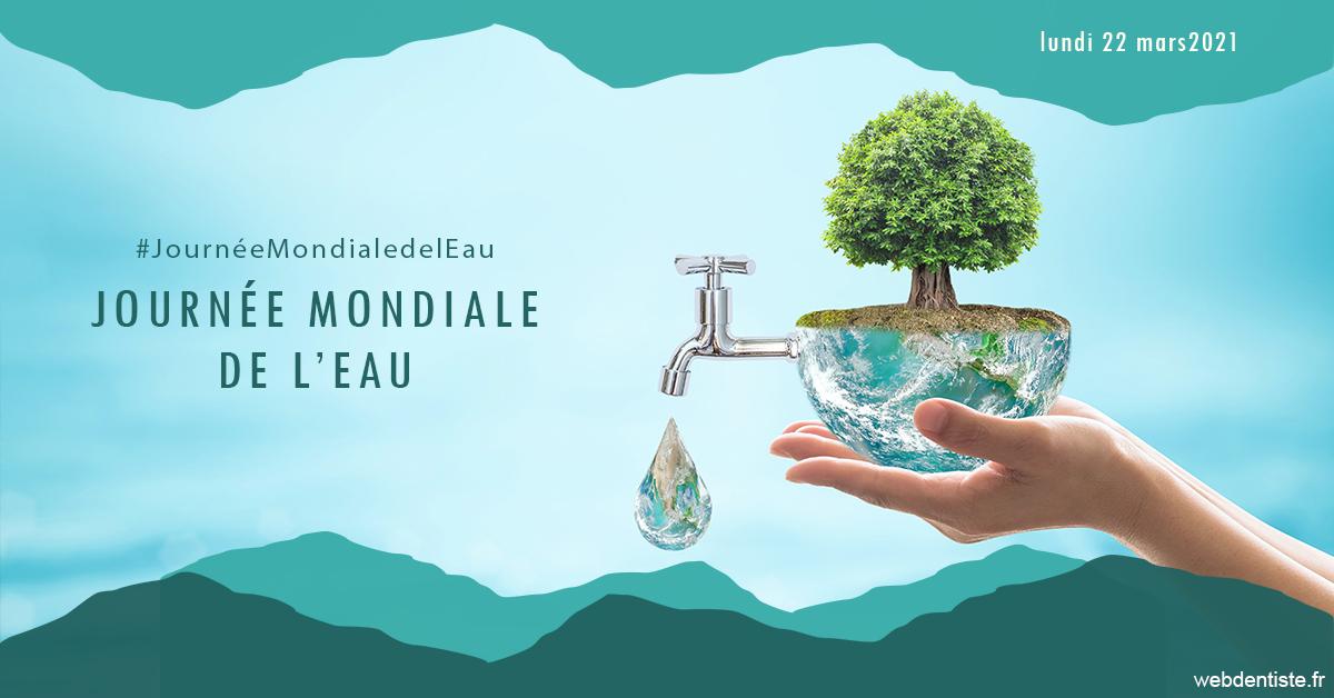 https://dr-goffoz-jf.chirurgiens-dentistes.fr/Journée de l'eau 1